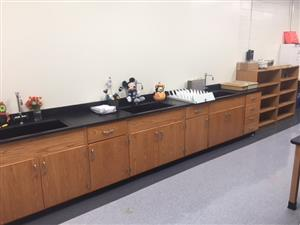 Science Rooms 3