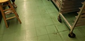 Stanlick Kitchen Flooring